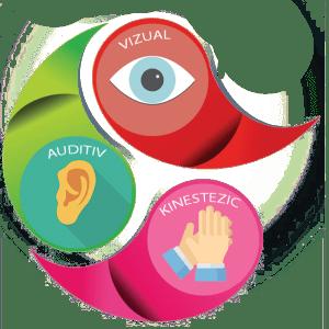 Vizual, Auditiv și Kinestezic